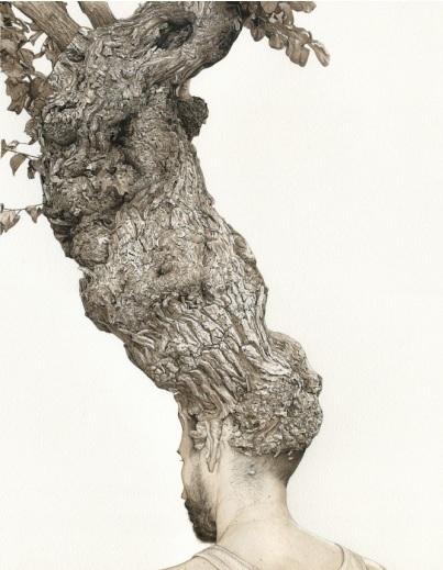 merelle_arbre